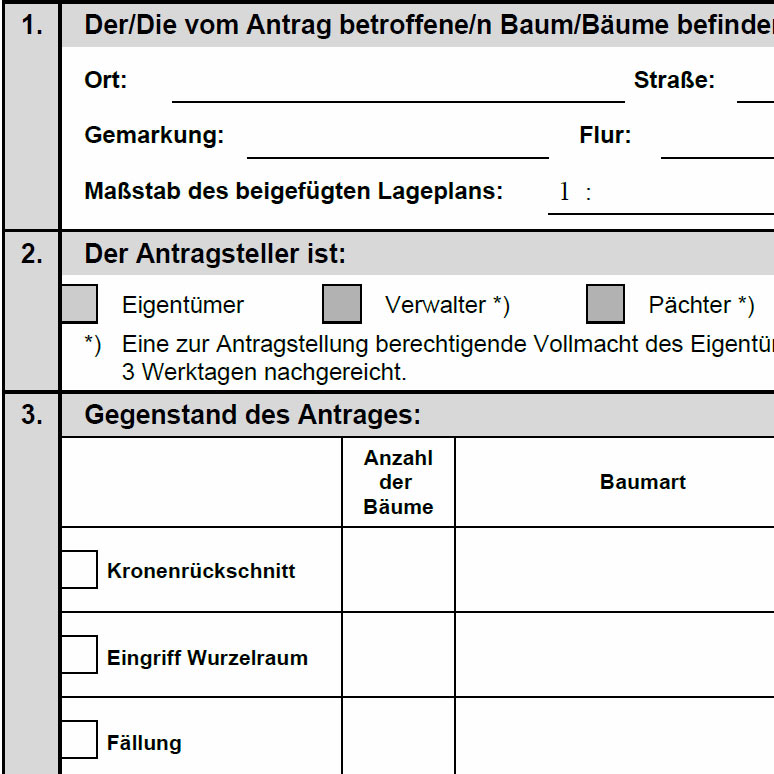 Formulare Stadtverwaltung Stadt Bürger Stadt Bad Blankenburg